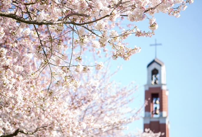 University of Portland highlight image